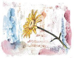 flowersun