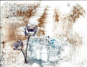waflower1