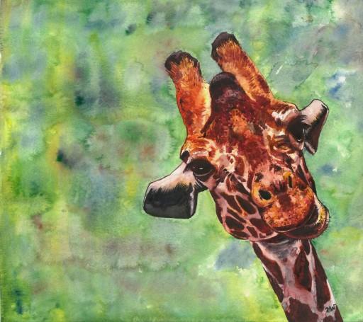 GiraffeFaceWAScan